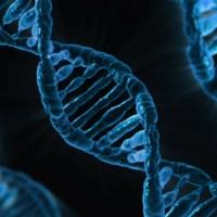Kennst du dein Genom?