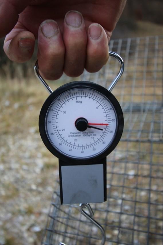 10 kg s klietkou