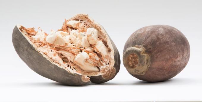 Baobabový prášok: výživný pozdrav z Afriky !
