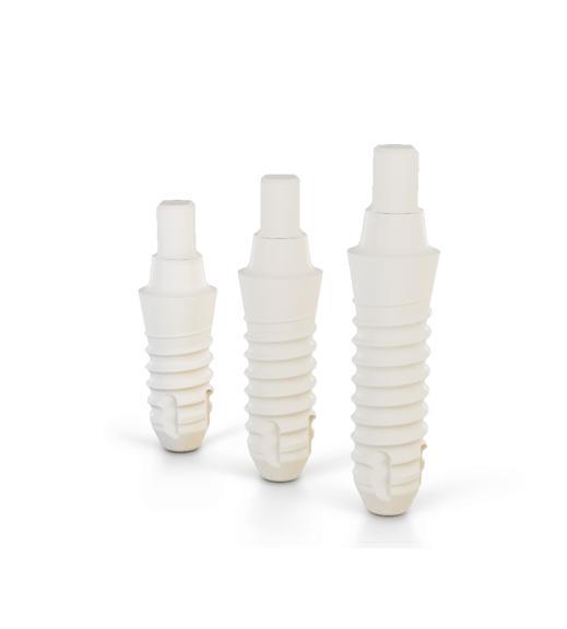 CERALOG Monobloc implantációs rendszerek