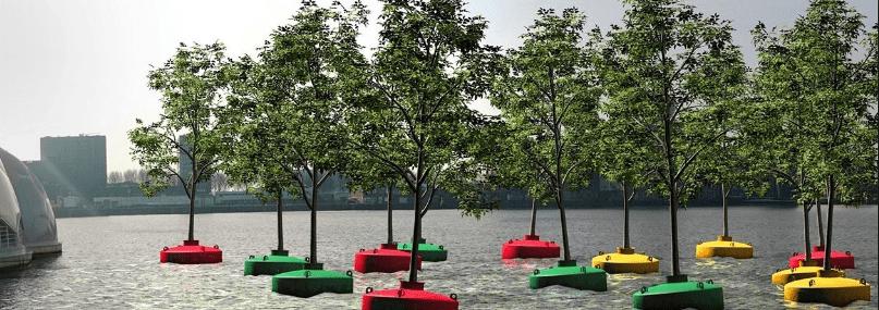 Roterdamska plutajuća šuma: U službi spašavanja drveća
