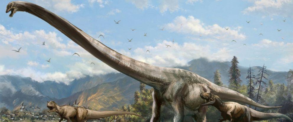 Нова студија о исхрани џиновских диносауруса биљоједа