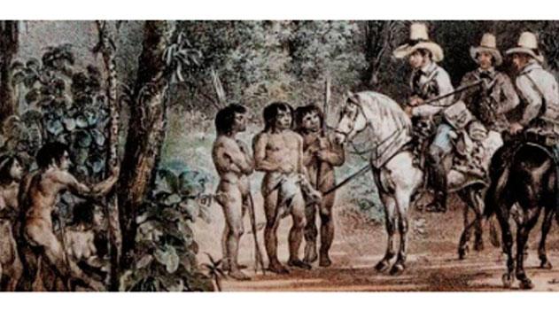 Simpósio de Plantas Medicinais do Brasil