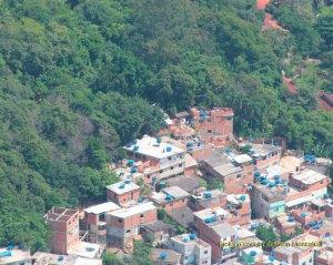 Ocupação desordenada - Zerar desmatamento não impacta economia