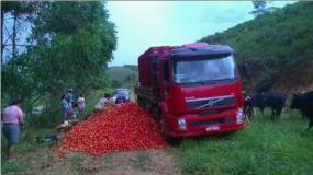 Fonte: http://g1.globo.com/espirito-santo/noticia/2017/01/preco-baixo-faz-produtores-do-es-descartarem-20-toneladas-de-tomate.html