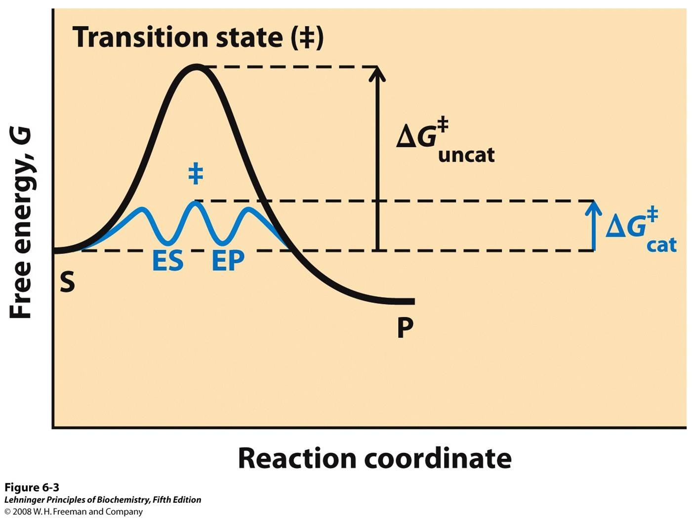 energy profile diagram of sn1 and sn2 reactions generac wiring reaction related keywords long