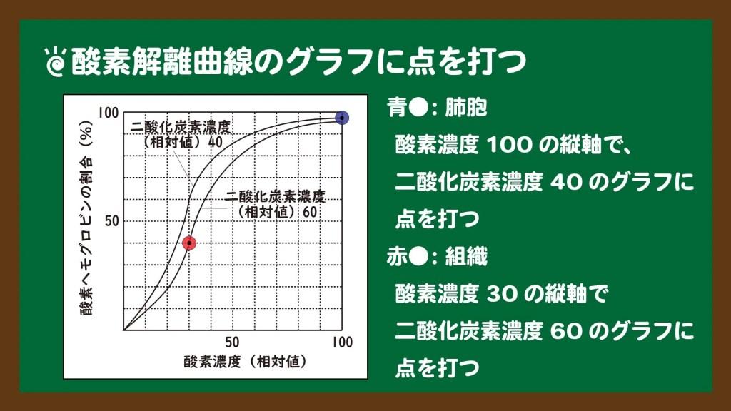 スライド2:酸素解離曲線のグラフの読み取り方