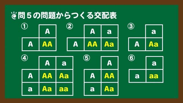 スライド8:問題5のそれぞれの交配表