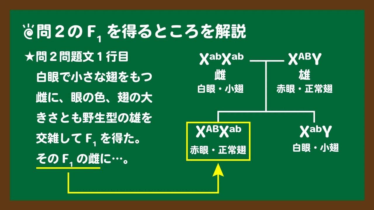 スライド5:問2のF1を得るところを図説