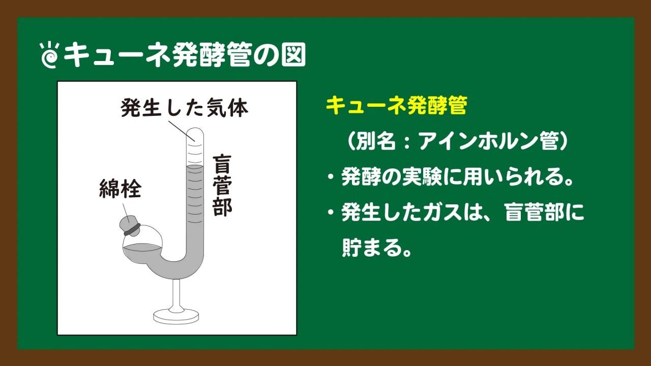 スライド3:キューネ発酵管の図