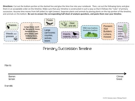 Primary Succession Timeline Cut and Paste