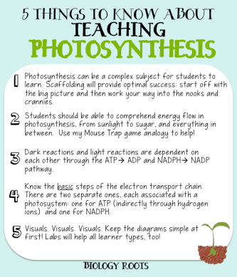 Tips for teaching photosynthesis in life science or biology