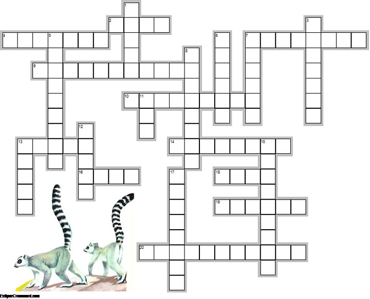 Mammal Crossword KEY