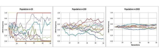 Gráfico de deriva genética aleatoria
