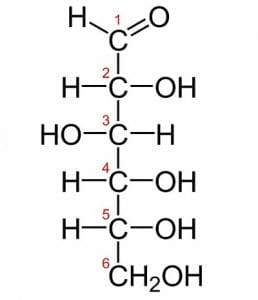 Monosaccharide: Definition, Function, Structure, Examples