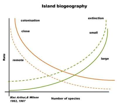 Island Biogeography: Theory and Examples | Biology Dictionary