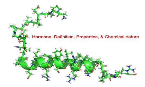 Image of Hormone