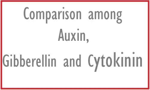 Image of Comparison among Auxin, Gibberellin and Cytokinin