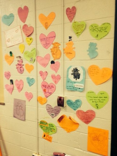 Our Heart a Fact Wall