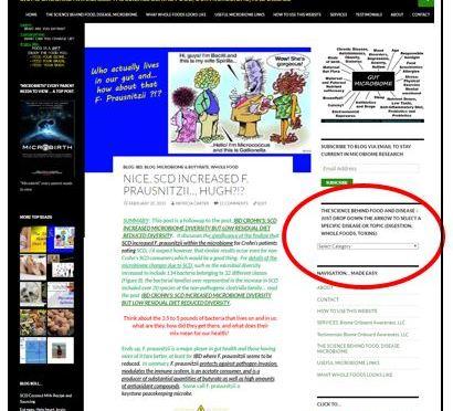 Website DropDown Menu, Right Side Bar