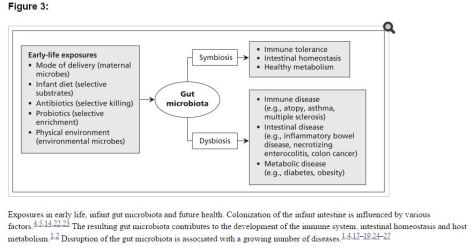 Later Life Disease Correlative to Mode of Del, Diet, Anti, Probiotic, PhysEnvir