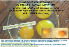 Egg White Intol Study