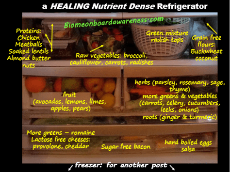 Whole Foods PALEO, SCD, GAPS Healing, Anti-inflammatory, Nutrient Dense Fridge