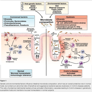 Figure 1, Genetic and Environmental Factors influence microbiota composition