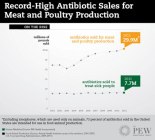 animal use of antibiotics vs human