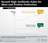 animal use of antibiotics vs human