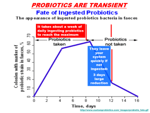 Transient Probiotics Chart
