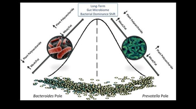 Preserve & Restore Loss of Microbiome Diversity is Aggressive Preventative Medicine