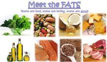 Meet the FATS