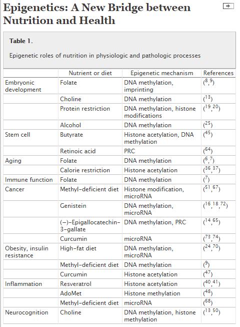 Epigenetic Mechanism(s) for Foods
