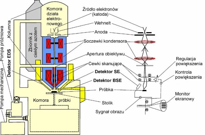 Fig. 6. Schemat budowy elektronowego mikroskopu skaningowego (SEM) (za Teper E., Podstawy mikroskopii skaningowej ).