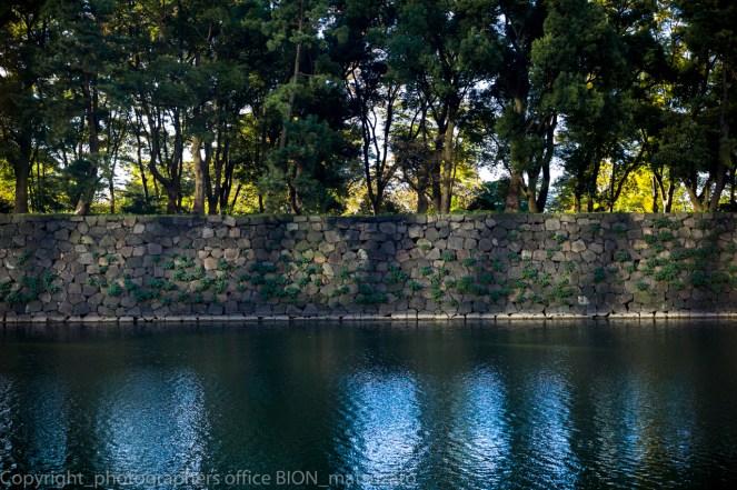 藝文東京ビエンナーレ2016発表作:Wall