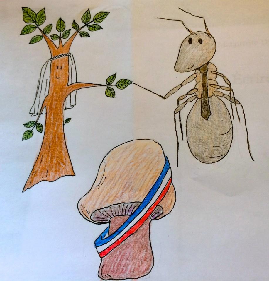 Mariage entre une plante et un insecte
