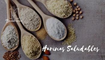 10 Alternativas saludables a la harina de trigo común- Bionutrición Ortomolecular