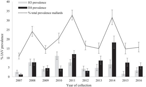 small resolution of  those of h3 gray bars and h4 black bars hemagglutinin subtypes in mallard samples from northwestern minnesota august 23 to september 26 2007 2016