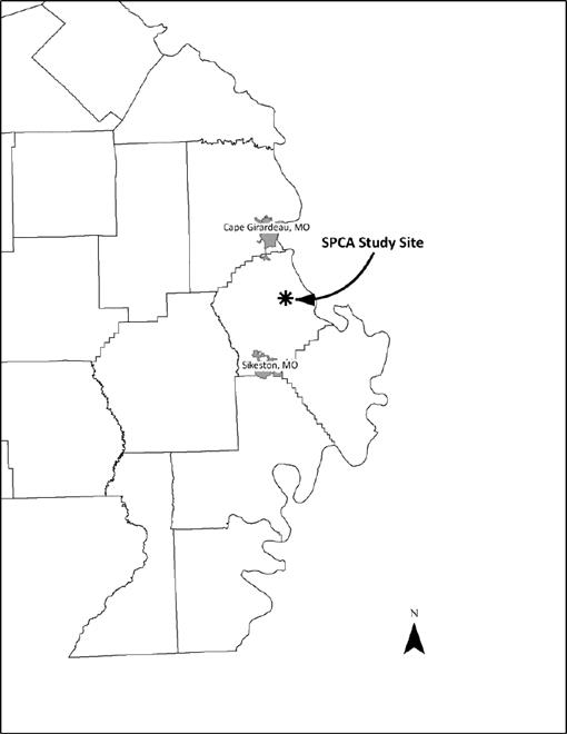 Vascular Plants of Sand Prairie Conservation Area in Scott