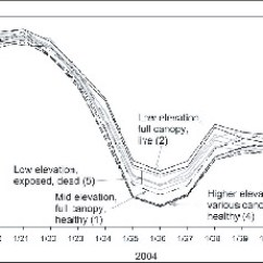 Forest Canopy Diagram Labelled Of Human Breathing System Influence And Snow On Microclimate In A Declining F08 73 Eps