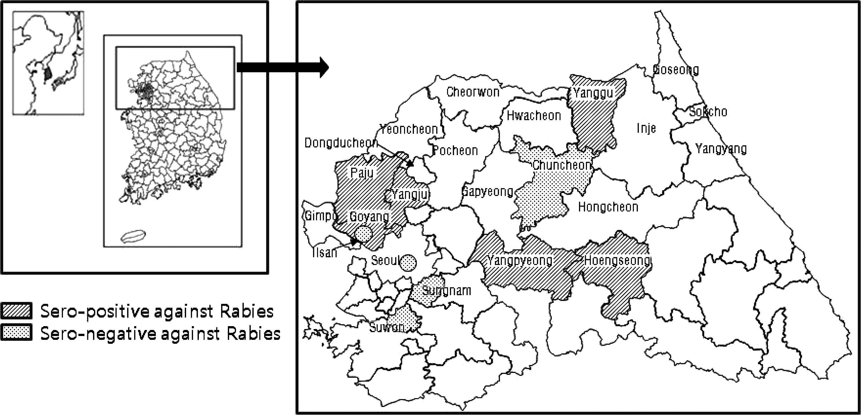 Detection of Antibodies Against the Rabies Virus in Korean