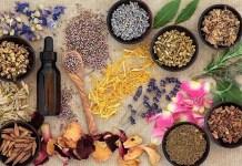 The Proper Ways of Using Herbal Remedies