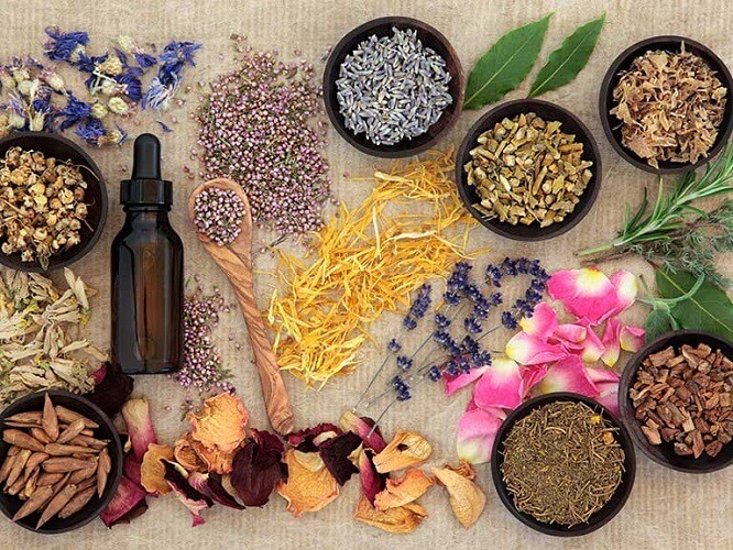 The Proper Ways of Using Herbal Remedies