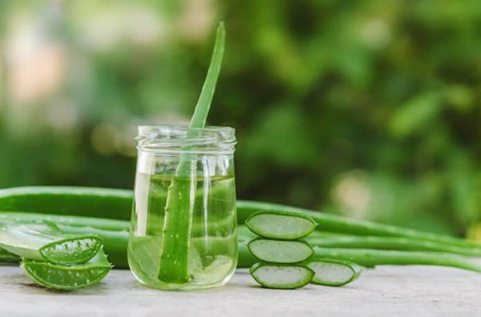 All About Aloe vera Benefits