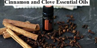 Cinnamon and Clove Essential Oils