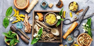 The History of Herbal Medicine