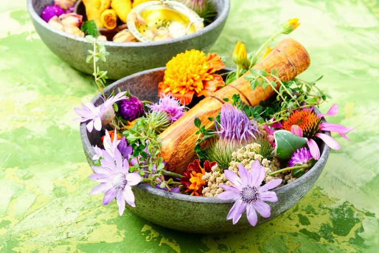 Information on Herbs: Medicinal, Culinary, and Homeopathic Uses