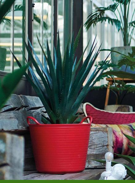 Plantas interiores artificiales