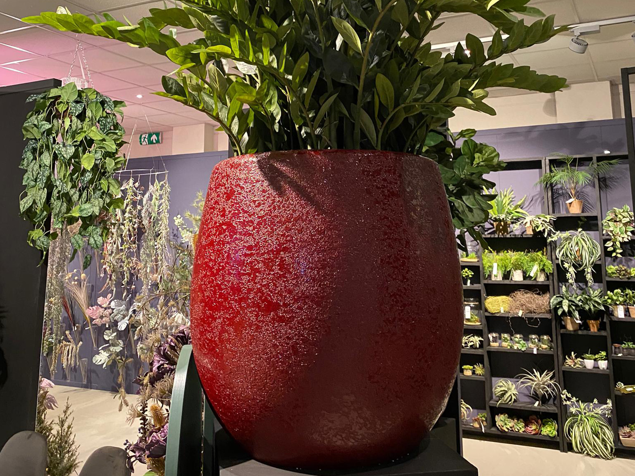 Plantas y flores artificiales Málaga | Showroom